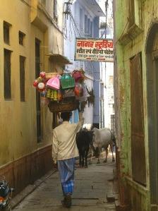 daniel adler india